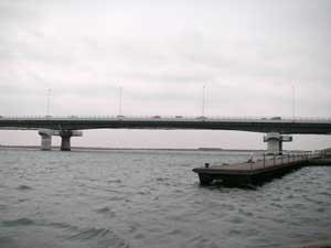 相模川河口にある須賀港。後ろには小さい漁港と魚市場があります。前に見える橋は、国道134号線の湘南大橋です。