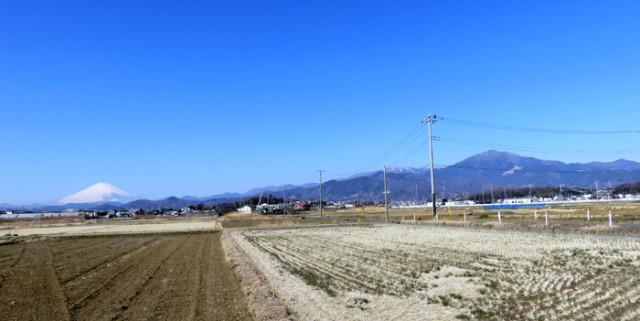 平塚市城所からの大山