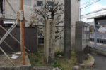 橋本駅 渡し場への道標
