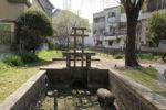 茨田樋遺跡水辺公園 樋