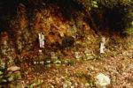 気賀 長楽寺 石段途中の石仏