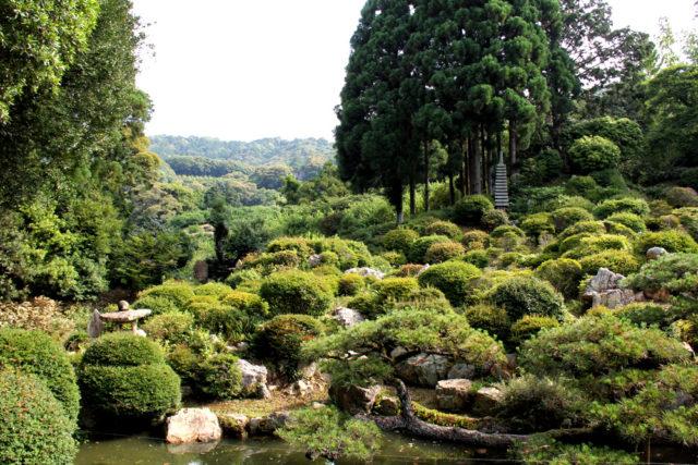 長楽寺の庭 北の山を借景