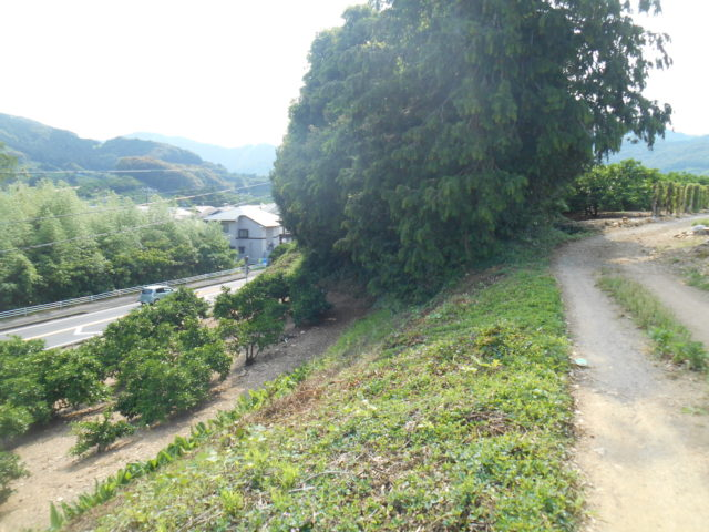 この高い所が旧姫街道。左側は林だったそうだ。