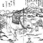 姫街道を通った象