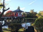 烏山寺町の高原院。鴨池の弁天堂。