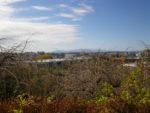 国分寺崖線からの眺め