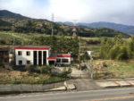 桃配山から北方の中山道を見る。松並木が見えます。