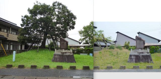 冨田の一里塚。台風前の写真(左)と台風後(2019年5月右)を並べたもの