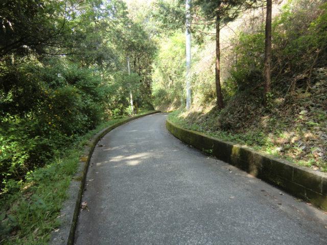 ホントに歩くR412 沓掛坂(愛川町)