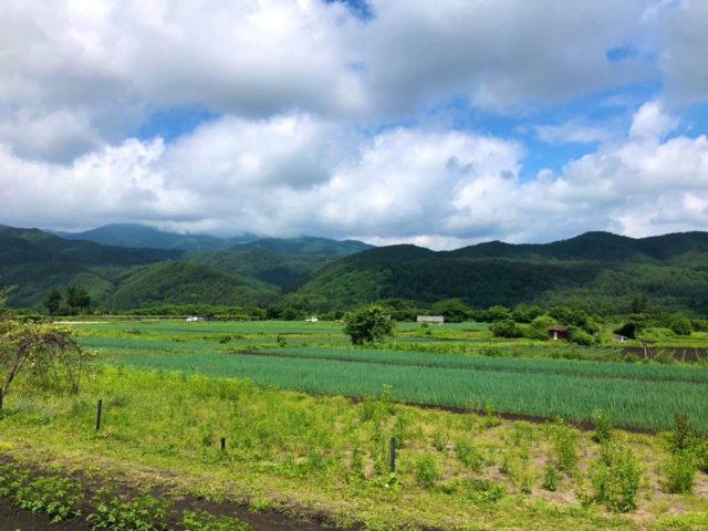 中山道 洗馬。国道19合沿いの畑。国道は中山道より高い所を通っています。