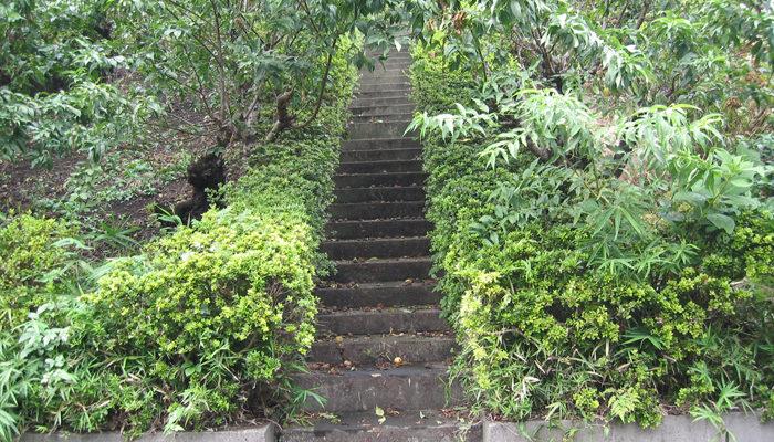 宮崎大塚へ登る石段