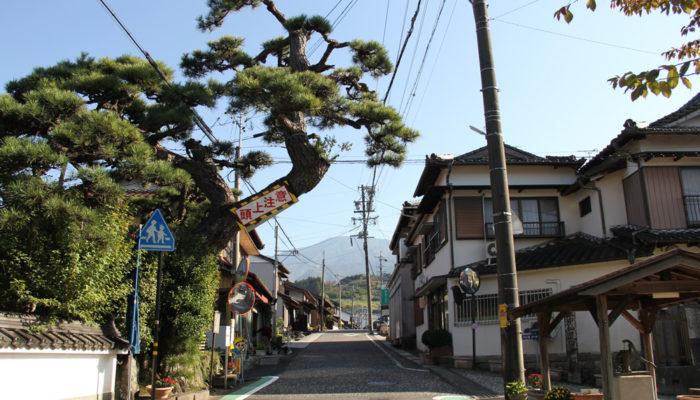 落合宿。元は枡形だったところの善昌寺。松は江戸時代から同じ場所に
