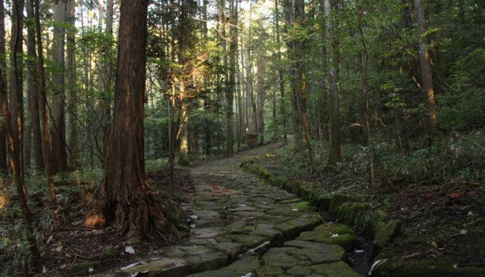 十曲峠の石畳の道