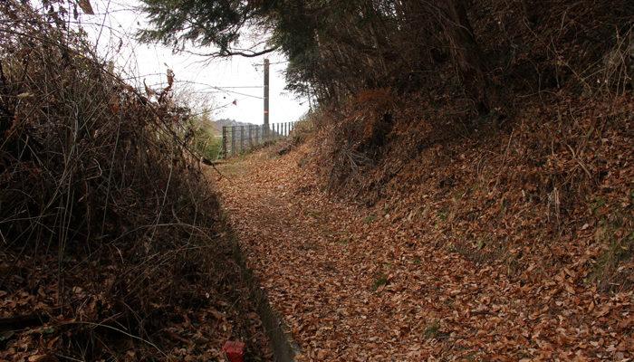 中央本線沿いに残る木曽古道