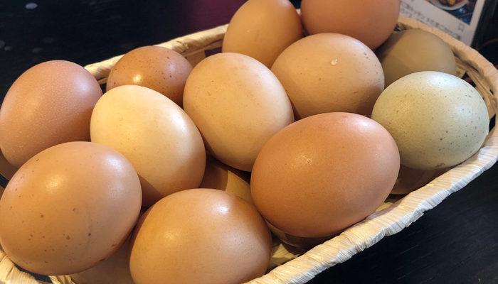 生卵は食べ放題