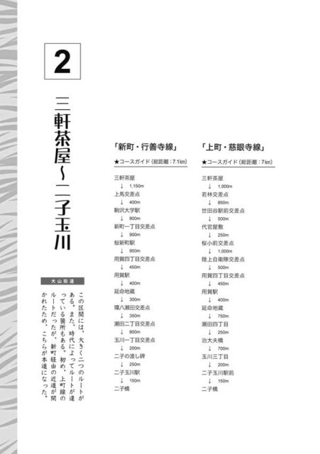『ホントに歩く大山街道』三軒茶屋〜二子玉川扉